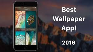 wlppr best wallpaper app for iphone