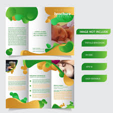 6 page trifold brochure template with