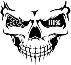 Skull 3 Percent Confederate Flag Car Or Truck Window Decal Sticker Or Wall Art All Time Auto Graphics