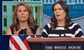 MSNBC's Nicolle Wallace apologizes for Sarah Sanders comment ...