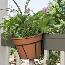 Manden Potten 6 Flower Pot Holders Hangers Rings Brackets Hang 5 Plant Pots On Fence Panels Tuin En Terras Samsungupdated Com