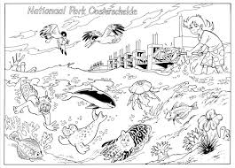 Colouring Pages Nationaal Park Oosterschelde