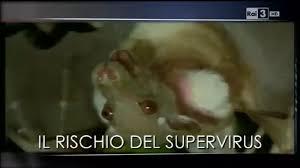 Il Super Virus polmonare da pipistrelli e topi