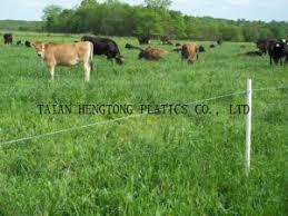 China Farm Electric Fence China Polywire Fence Polyrope Fence