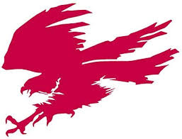 Amazon Com Hawk Eagle Falcon Vinyl Decal Sticker 7 75 X 5 75 Red Home Improvement