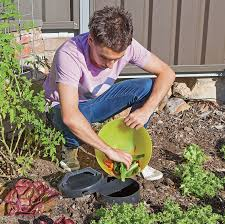 4 ways to start composting as a er