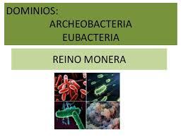 Resultado de imagen de los dominios Bacteria (eubacterias) y Archaea (arqueobacterias).
