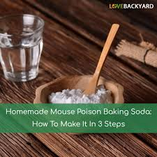 homemade mouse poison baking soda how