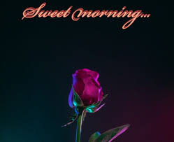 collection happy morning quotes beautiful images