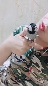 صور بنات بالزي العسكري صور بنات بالملابس العسكريه
