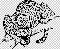 Leopard Whiskers Car Sticker Wall Decal Png Clipart Animal Art Artwork Aztec Warrior Big Cats Free