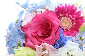 ガーベラの花束の写真素材 写真素材なら「写真AC」無料(フリー ...