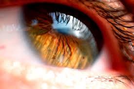 iris reflection beautiful eyes