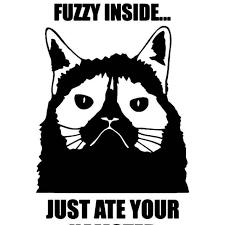 Grumpy Cat Quote Meme 5 Vinyl Sticker