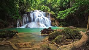 forest waterfall wallpaper 56 pictures