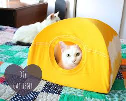 diy ment faire une cabane pour chat