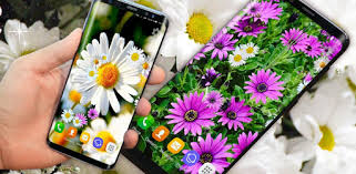 d daisy live 🌼 spring field themes aplikasi di