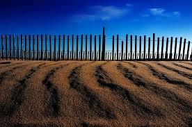 Nature Landscape Outdoors Sky Sand Sand Dune Fence Beach Blue Summer Pikist