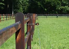 Electric Fence Insulators As An Addition To Wooden Fencing Gallagher