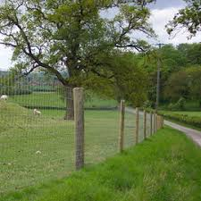 Stockproof Fencing Equine Greyhound Stock Fencing Products Thurles
