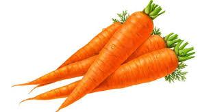 Carrot (కారట్)