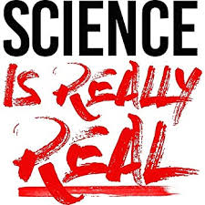 Science Is Real Kindness Is Everything Vinyl Decal Wall Laptop Bumper Sticker 5 Motorcycle Atv Automotive
