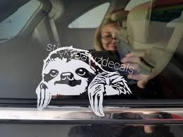 The Original Peeking Sloth Decal Etsy