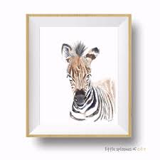 Baby Zebra Art Print Nursery Wall Art Kids Room Decor Little Splashes Of Color Llc