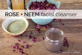 three ing neem face wash recipe