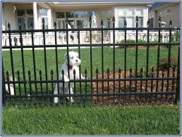 Ungodly Aluminum Fence Home Depot