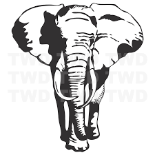 Elephant Vinyl Wall Decal Large Elephant Stickers For Walls Beauautiful Animal Bedroom Wall Decor Trendy Wall Designs