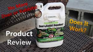 Liquid Fence Product Review Keep Those Deer And Rabbits Out Youtube