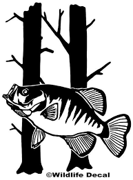 Crappie And Trees Decal Md Fishing Window Stickers Truck Window Stickers Tree Decals Window Stickers