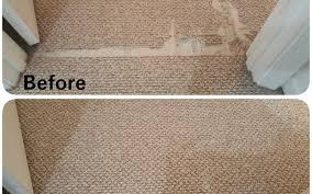 berber carpet repair pet damage