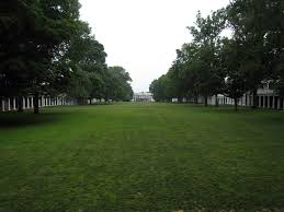 lawn wikipedia