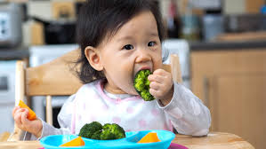 baby meal plan 12 month old happy