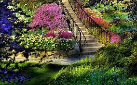 صور حديقة ورد