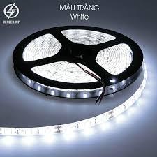 Đèn LED dây trang trí 5730 siêu sáng nhiều màu 5 mét 300 led 12V