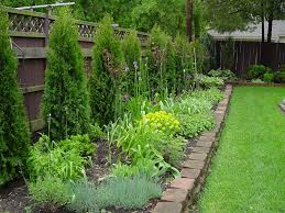 Landscaping Along Fence Line Landscaping Along Fence Line Design Ideas And Photos