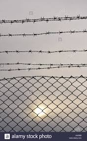 Barbed Wire Fence Detail Stock Photo Alamy