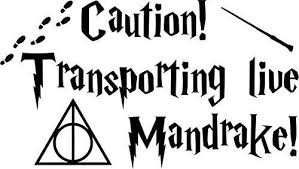 Lovely Novelty Pick Up Novelty Items Just For Your Amazing Online Shopping Harry Potter Decal Popular Decal Harry Potter Car