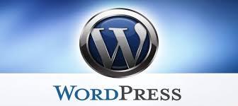 wordpress siteye ads txt dosyası ekleme
