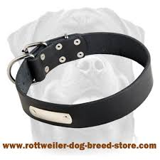 custom collars id tags rottweiler