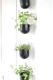 modern herb garden ink co