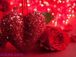 ورد أحمر حب