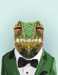 Zoo Portraits Cape Dwarf Chameleon Wall Decal Blik