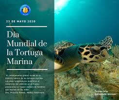 El calentamiento global incide en la... - Colegio de Médicos Veterinarios  de Costa Rica | Facebook