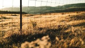 Our Blog The Fence Post High Tensile Wire