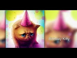 birthday cat cute live wallpaper for