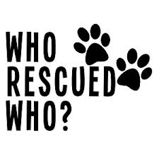 Who Rescued Who Dog Cat Adopted Vinyl Sticker Car Decal